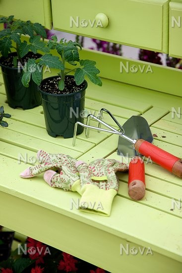 Phenomenal Work Bench With Tomato Young Plant Garden Tools And Garden Pdpeps Interior Chair Design Pdpepsorg