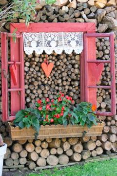 annuals, begonia (Genus), Hearts, Holzstück, window box, window, wood