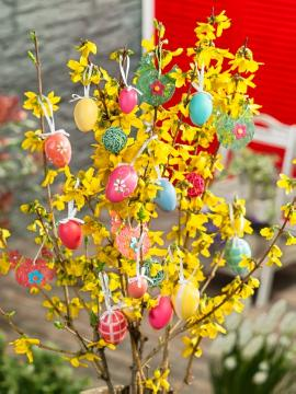 atmosphere, Easter decoration, Easter eggs, Easter, Forsythia x intermedia