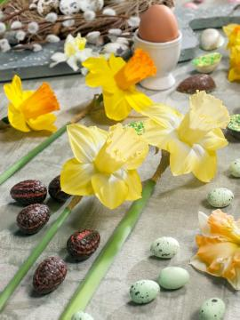 atmosphere, daffodil (Genus), Easter decoration, Easter, Ostertisch, Stimmungsbild mit Narcissus