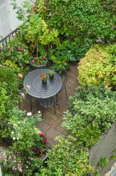 Garden Furniture, Urban Garden