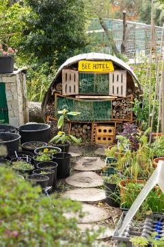 Insect hotel, Urban Garden