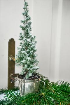 Christmas decoration, Christmas, Picea glauca, Reisig, snow