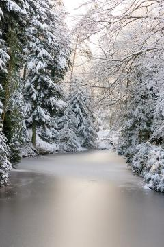 pond, snow, Winter, Winterlandschaft