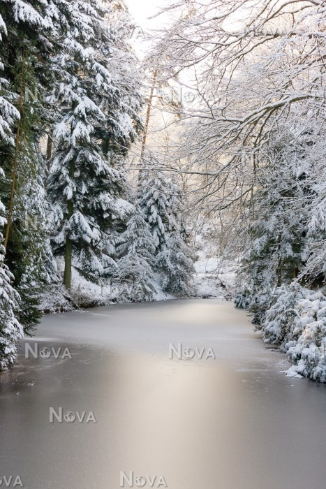 N2301756 Winter scenery with pond