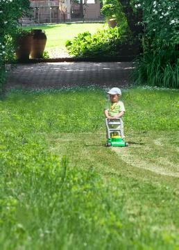 boy, child, Gartenarbeit, Rasen