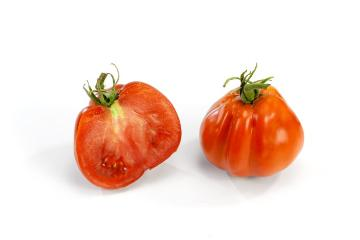 Tomato, white background