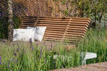 Garden Furniture, Ornamental Grasses, Verbena bonariensis