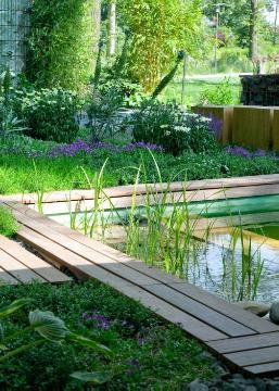 perennials bed, swimming pond