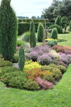Coniferes, flower bed, heather (Genus), Heather garden, Juniperus (Genus), Ornamental Grass, planting, Säulenwuchs