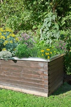 herbs bed, Kräutermischung, raised bed, vegetables bed, vegetables mix