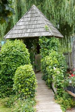atmosphere, Common Ivy, garden design, Gehweg, pavillion, white willow