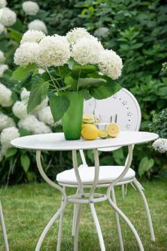 atmosphere, flower vase, Garden Furniture, Garten, Geschirr, hydrangea (Genus), impression