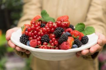 atmosphere, Beerenobst Mischung, Blackberry, People, person, Raspberry, Red Currant, Strawberry, Vaccinium corymbosum