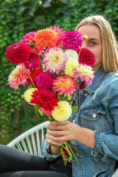 bouquet of flowers, Dahlia Decorative, girl, Mixture (Mix), woman