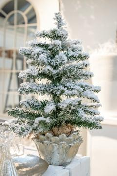 Christmas decoration, Christmas, fir (Genus), Plant container «Accessories in the Garden»