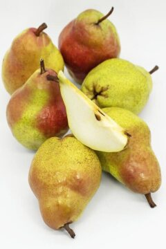 AY Etiket, pear tree, white background