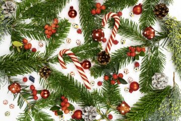 Christmas decoration, Christmas tree ball, Christmas, fir (Genus), pinecone, Reisig, snowberry (Genus)