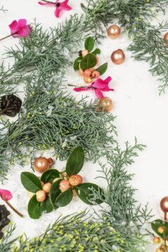 Christmas decoration, Christmas tree ball, Christmas, Cupressus (Genus), cyclamen (Genus), snowberry (Genus), white background