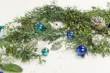 Christmas decoration, Christmas tree ball, Christmas, Cupressus (Genus), pinecone, white background