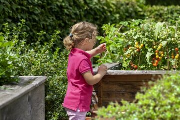 girl, Gooseberry, nibble garden, Raised Bed, Strawberry