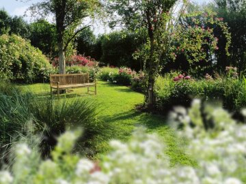 Garden Bench, Ornamental Grasses, Perennial garden, Rose garden, View in the garden, wooden bench