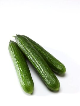 Pickling Cucumber, white background